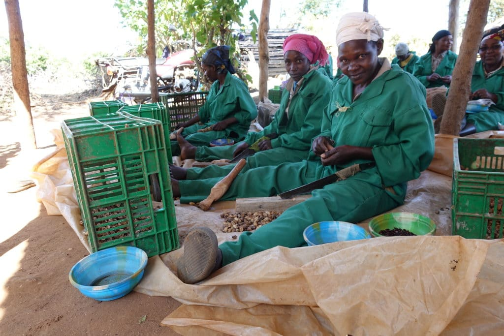 Arbetare på Kiambere plantaget - Better Globe @RIkaKvinnor.se - kopia